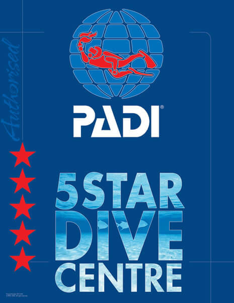 BDC Is A PADI 5 Star Dive Centre In Marlborough NZ