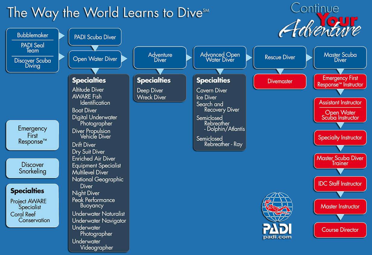 Flowchart Of PADI Scuba Diving Courses