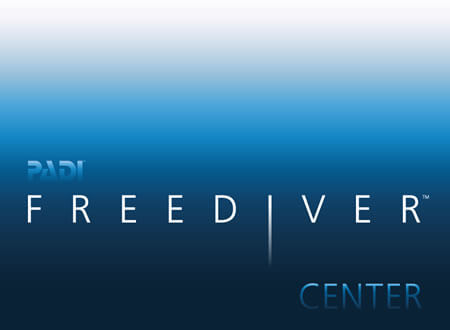 Blenheim Dive Centre Is The PADI Freediver Centre For Nelson And Marlborough NZ